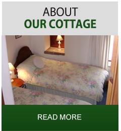 Self Catering Cottage in North Yorkshire
